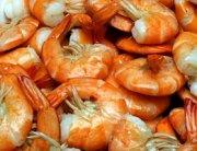 Tar Bay Seafood